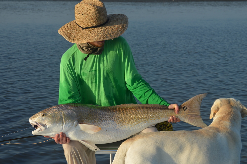 Featured guide charleston fly fishing expeditions for Charleston fly fishing